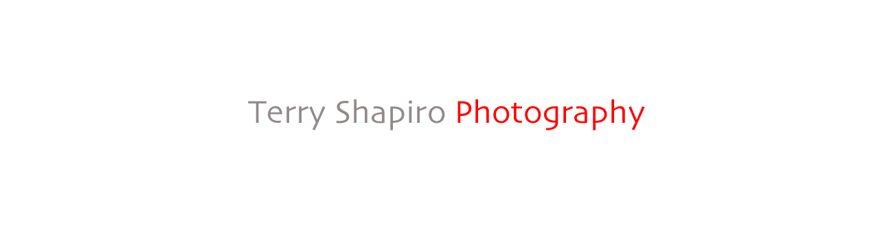 TERRY SHAPIRO PHOTOGRAPHY